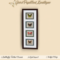 35L DPB Butterfly Picture Frames - 4