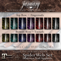 January ~ Spiderweb Nails DISPLAY