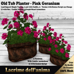 (PIC) Old Tub Planter - Pink Geranium
