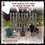 tms-plant-for-sale-to-good-home-2