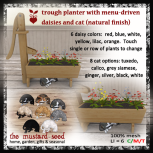 tms-trough-with-menu-driven-daisies-and-cat-in-natural