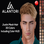 ALANTORI - Justin Mesh Hair in 30 Colors