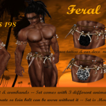 [TF] - Feral ~ Warrior