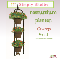 Simply Shelby Nasturium Planter Orange - avail in 4 colors