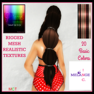 Mulan Long MESH Hair_Back Display Tex