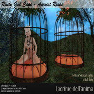 (PIC) Rusty Girl Cage - Apricot Roses