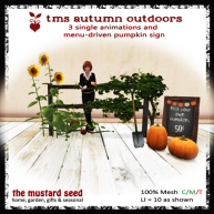 tms-autumn-outdoors
