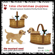 tms-christmas-puppies_Mixed_blue-AD-2
