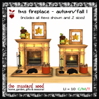 tms-fireplace---autumn-1