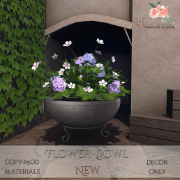 Bloom! - Flower Bowl NewAD - GIFT