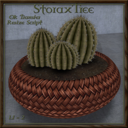 Cactus and Wicker Cb